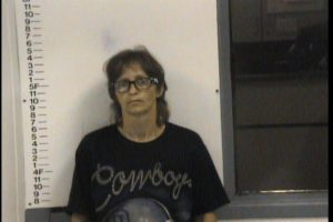 SMITTY, SHELIA GALE - THEFT OF PROPERTY; FILING FALSE REPORTS; MFG DEL SEL CONTROLED SUBSTANCES