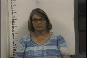 Saunders, Susan Diane - Domestic Assault
