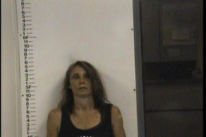 WILMOTH, MARY ANN - PUBLIC INTOXICATION