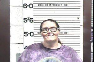 Ward, Christel Lynn - Violation of Probation