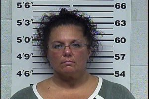 ALLISON, SONYA RENEE - CRIMINAL TRESPASSING, THEFT OF MERCHANDISE