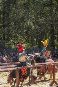 Carolina Renaissance Festival-40