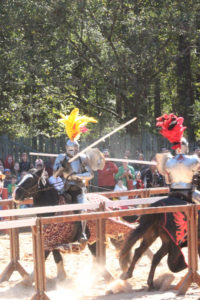 Carolina Renaissance Festival-41