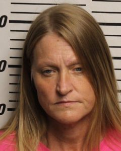 Debbie Stults-Controlled Substance-Possession of Meth-Tampering with Evidence-Drug Paraphernalia