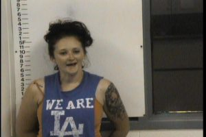HOWARD, TOSHA NICOLE - DUI; CHILD ABUSE CHILD ENDANGERMENT