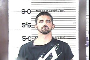 LEWSI, TIMOTHY RICHARD - THEFT OF PROPERTY OVER $1,000