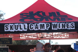 Statesville Hot Air Balloon Festival-11