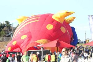 Statesville Hot Air Balloon Festival-18