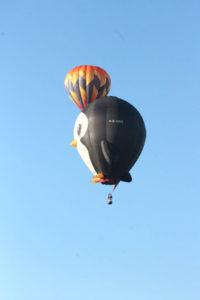 Statesville Hot Air Balloon Festival-29