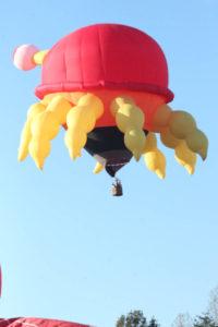 Statesville Hot Air Balloon Festival-34