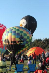 Statesville Hot Air Balloon Festival-4