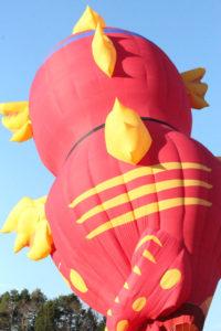 Statesville Hot Air Balloon Festival-49