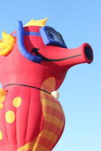 Statesville Hot Air Balloon Festival-51