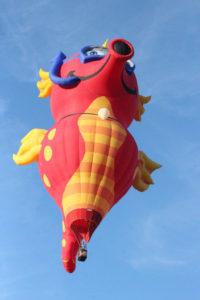 Statesville Hot Air Balloon Festival-58