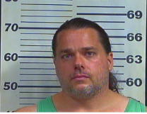 WEAVER, JUSTIN - DRIVING ON REVOKED OR SUSPENDED LICENSE