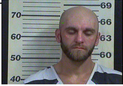 LAKINS, BRANDON JAMES - THEFT OF PROPERTY BANK CARD; THEFT OF PROPERTY VEHICLE; THEFT OF PROPERTY KEYS; FRAUD USE:ILLEGAL POSS CRE:DEB CARD X 9