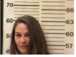 LEE, APRIL DAWN - DUI; EVADING ARREST, FELONY; AGG ASSAULT