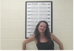SHILLINGS, MELISSA D - DOMESTIC ASSAULT; DISORDERLY CONDUCT; FALSE REPORTS