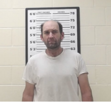 STEPHENS, STACY - THEFT OF A MOTOR VEHICLE, THEFT OVER 1000