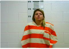 WILIS, SAMANTHA MARIE - AGGRAVATED CRIMINAL TRESPASS