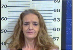 WILLIAMS, LARENA NELL - THEFT OF PROPERTY