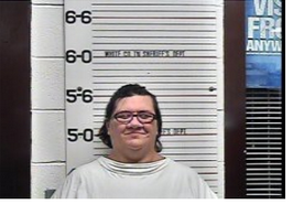 EDSON, JAMIE ANN - THEFT OVER 10,000