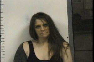 JENKINS, AMY DALVA- CRIMINAL IMPERSONATION 2ND; MFG:DEL:SELL METH SCHOOL ZONE; POSS OF WEAPON DURING FELONY