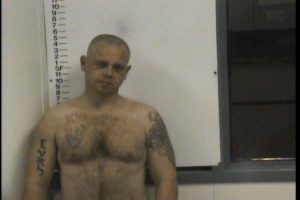 JOHNSON, CHRISTOPHER VAN- RESISTING ARREST; THEFT OF PROPERTY; PI; VOP-REENTRY
