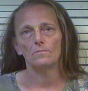 GAY, SHEILA FAYE- DOMESTIC ASSAULT; THEFT $500-$1000; FTA