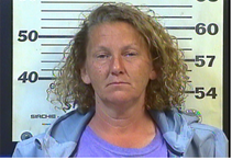 SELBY, SALLY RENAE - THEFT OF PROPERTY