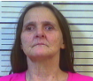 BUMGARDNER, BARBARA ANN- THEFT OF MERCHANDISE