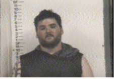 NEAL, JEREMY LEE RAY - BURGLARY; THEFT; CHILD ABUSE:NEGLECT OR ENDANGERMENT