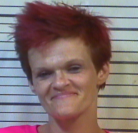 STOVER, ERICA DANELLE- FALSIFY DRUG TEST; THEFT OF MERCHANDISE; DRUG PARA; SIMPLE POSS; POSS METH