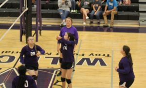 mhs volleyball 9-10-19 3