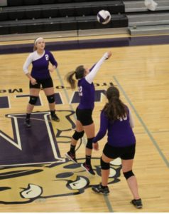 mhs volleyball 9-12-19 20