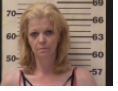 TIDWELL,KAREN BETH - AGG ASSAULT; ESPECIALLY AGG KIDNAPPING; CONT SUB SCH II