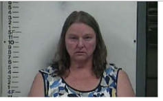 ELY, VIRGINA DEE - PUBLIC INTOXICATION; POSS HANDGUN UNDER THE INFLUENCE