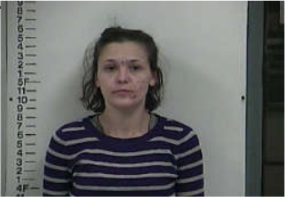 STAFFORD, JESSICA ROSEMARIE - THEFT OF MERCHANDISE-SHOPLIFTING; DOMESTIC ASSAULT; THEFT; DUI; UNLAWFUL DRUG PARA; DUI