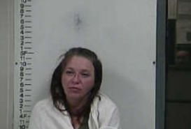BRYANT, LEIGHT ANN - PUBLIC INTOXICATION; INSTANTER CAPIAS