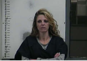 CRAIG, MONICA LAZARA - CAPIAS:BENCH WARRANT:THEFT OF PROPERTY; CAPIAS:BENCH WARRANT METH:POSSESS