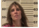 WILMOTH, MARY ANN - PUBLIC INTOXICATION; THEFT OF PROPERTY UNDER $500; AGG BURGLARY