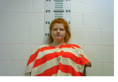 SHELLENBARGER, SELENA MARTHA - THEFT OF PROPERTY; FRAUDULENT USE OF CREDIT CARD; THEFT OF PROPERTY
