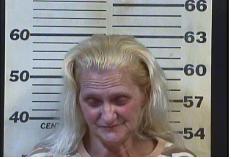 SMITH, JOYCE ANN - CRIMINAL TRESPASSING