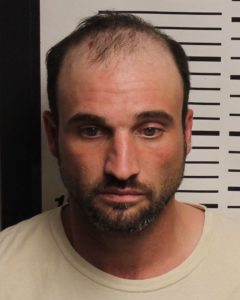 SCANTLAND, DANIEL LEE - THEFT OF PROPERTY X2; MFG:DEL:SALE:POSS METH; THEFT OF MOTOR VEHICLE; POSS FIREARM DURING COMMISSION