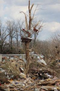Tornado Damage in Putnam County 3-3-20 by David-132