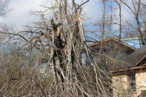 Tornado Damage in Putnam County 3-3-20 by David-68