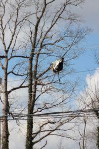 Tornado Damage in Putnam County 3-3-20 by David-97