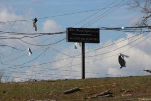 Tornado Damage in Putnam County 3-3-20 by David-99