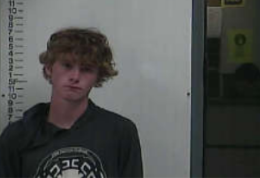 CRAWFORD, JASON P - CONTROLLED SUBSTANCE OFFENSES