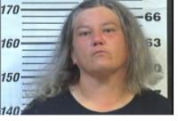 CLARK, NATASHA ELAINE - SUSPENDED:REVOKED LICENSE; EVADING ARREST